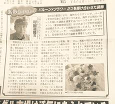 ブライダル産業新聞2016